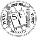 Logo de SEI, color blanco y negro con fondo transparente.